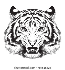 Black and white vector sketch of a growling tiger's face