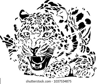 Black and white vector sketch of lying leopard