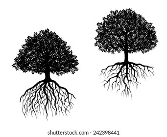 Black and white vector trees showing different root systems with intricate fibrous roots and differently shaped leafy canopies