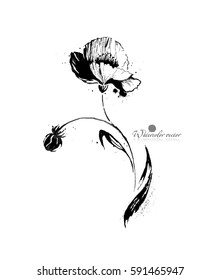 black and white watercolor flower on white background
