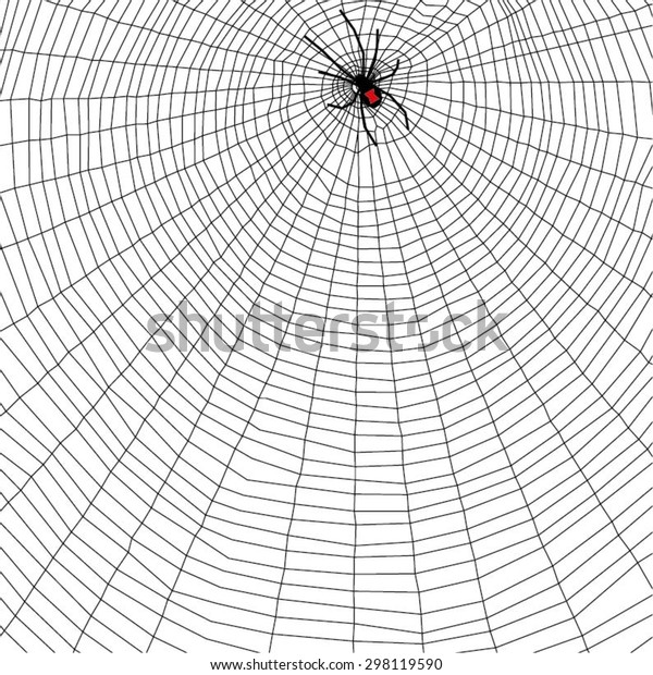 Black Widow Spider Web Vector Abstract Stock Vector Royalty Free 298119590