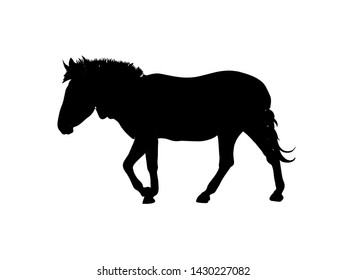 Black zebra symbol on a white background, profile view,graphic vector illustration for fabric,paper,wrap,t-shirt,textile, poster, card, wallpaper or back