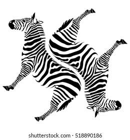 black zebras on white background