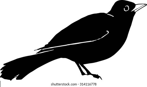 Black-and-white silhouette of a blackbird