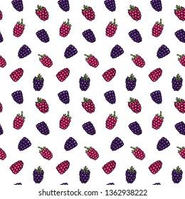 Blackberry (bramble, dewberry) and raspberry hand drawn pattern vector illustration. Bramble berries and raspberry hand drawn sketch seamless pattern.