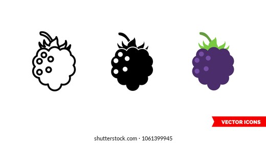 Blackberry icon of 3 types: color, black and white, outline. Isolated vector sign symbol.