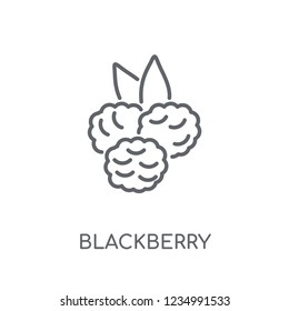 Blackberry linear icon. Modern outline Blackberry logo concept on white background from Fruits and vegetables collection. Suitable for use on web apps, mobile apps and print media.
