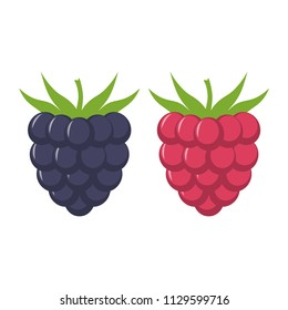 Blackberry and raspberry with leaves vector icon. Blackberry and raspberry icon clipart. Blackberry and raspberry cartoon.