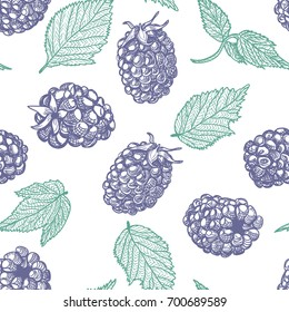 Blackberry seamless pattern. Engraved wild berries with leaves. Vector hand-drawn illustration on white background.
