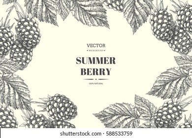 Blackberry. Vector floral background. Vintage botanical hand drawn illustration with bramble berries and leaves
