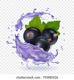 Blackcurrant juice splash. Forest berries smoothie. Vector realistic illustration