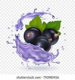 Blackcurrant juice splash. Forest berries smoothie. Vector realistic illustration