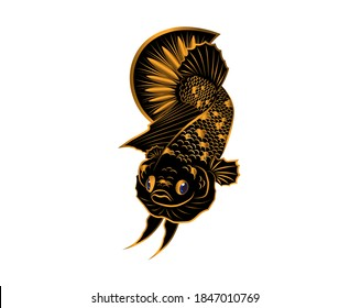 Blackstar gold betta fish vector on white background with for logo