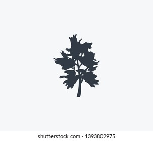 Blackthorn tree icon isolated on clean background. Blackthorn tree icon concept drawing icon in modern style. Vector illustration for your web mobile logo app UI design.