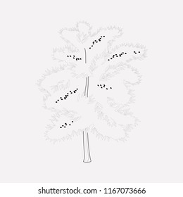 Blackthorn tree icon line element. Vector illustration of blackthorn tree icon line isolated on clean background for your web mobile app logo design.