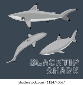 Blacktip Shark Cartoon Vector Illustration