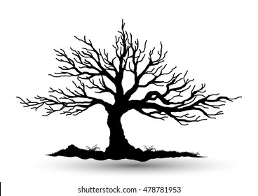 Black-tree, Branch Silhouette  over white background,