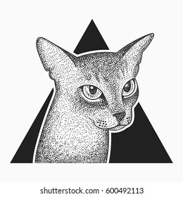 Blackwork dotwork tattoo abyssinian cat in triangle design.