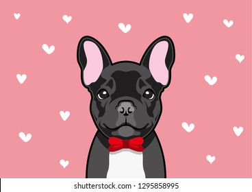 Blacky French Bulldog in red bow costume, he is ready to meet his valentine date couple.