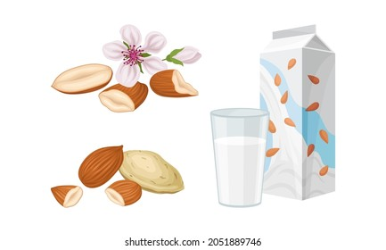 Blanched and Unshelled Almond Nut as Edible Seed and Carton of Milk Vector Set