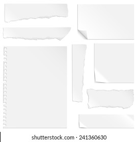 Blank Paper with Bends and Tears - Each element is grouped separately for easy editing.