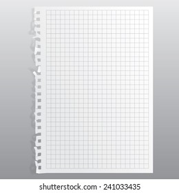 blank realistic perforated squared sheet. Portrait orientation.