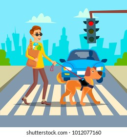 Blind Man Vector. Young Person With Pet Dog Helping Companion. Disability Socialization Concept. Blind Person And Guide Dog On Crosswalk. Cartoon Character Illustration