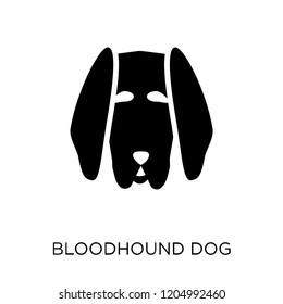 Bloodhound dog icon. Bloodhound dog symbol design from Dogs collection. Simple element vector illustration on white background.