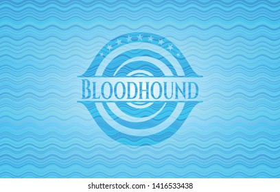 Bloodhound water representation emblem. Vector Illustration. Detailed.