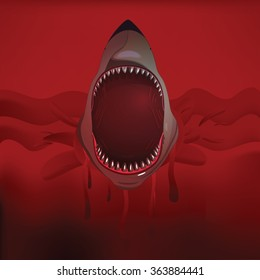 Bloody shark with open mouth.On the red waves Vector isolated.