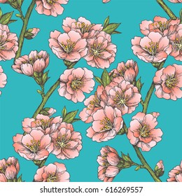 Blooming almond. Floral seamless border. Vintage hand drawn illustration with spring flowers of apple, cherry or apricot tree. Vector botanical texture