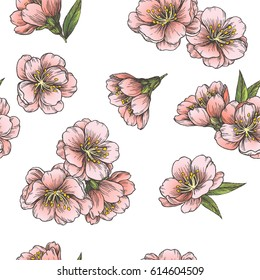 Blooming almond. Vector seamless pattern with flowers of sakura. Spring floral texture. Hand drawn vintage botanical illustration