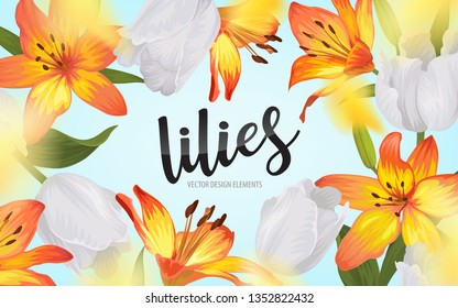 Blooming beautiful orange lily and tulip flowers background template. Vector set of blooming floral for wedding invitations, greeting card, voucher, brochures and banners design.