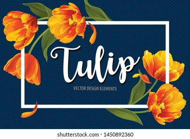 Blooming beautiful orange with yellow tulip flowers on blue background template. Vector set of blooming floral for wedding invitations, greeting card, voucher, brochures and banners design.