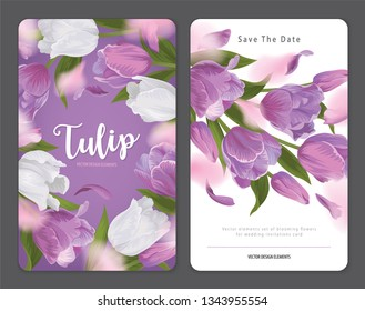Blooming beautiful purple with white tulip flowers background template. Vector set of blooming floral for wedding invitations, greeting card, voucher, brochures and banners design.
