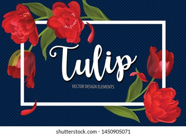 Blooming beautiful red tulip flowers on blue background template. Vector set of blooming floral for wedding invitations, greeting card, voucher, brochures and banners design.