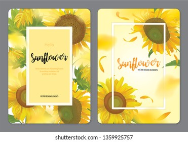 Blooming beautiful sunflowers background template. Vector set of blooming floral for wedding invitations, greeting card, voucher, brochures and banners design.