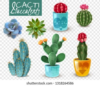 Blooming cacti and popular succulents varieties easy care decorative indoor plants realistic set transparent background vector illustration