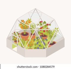 Blooming flowers and potted flowering plants growing inside glass dome greenhouse. Modern glasshouse or orangery isolated on white background. Bright colored vector illustration in cartoon flat style