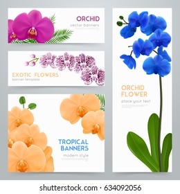 Blooming orchid plants 4 tropical botanic banners collection with exotic colorful flowers realistic isolated vector illustration