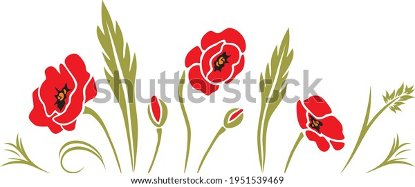blooming-poppies-decorative-elements-fla