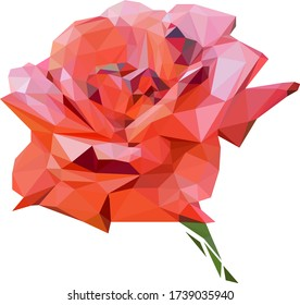 a blooming red rose Bud stylized from triangles colored