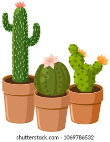 Blooming spiny green cactus with eyes. Vector.