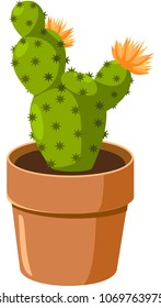 Blooming spiny green cactus. Vector