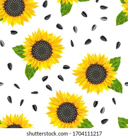 Blooming yellow sunflower, green leaves and seeds seamless pattern on a white background. Vector illustration in cartoon flat style.