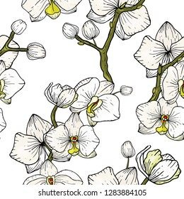 Blossom floral seamless pattern of orchid. Blooming realistic isolated flowers. Hand drawn. Vector illustration.