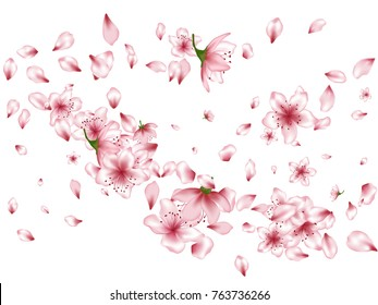 Blossom flowers, buds and petals flying vector background. Spring isolated elements on white background. Bloom parts confetti - pink petals and flowers flying floral windy pattern.