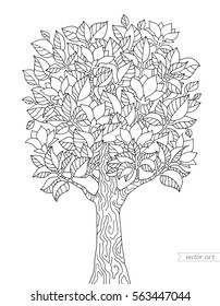 Blossom tree isolated, magnolia flowers. Forest. Vector hand drawn paper artwork. Bohemia concept for wedding invitation card, branding, logo, label, emblem. Coloring book page for adult. Black line