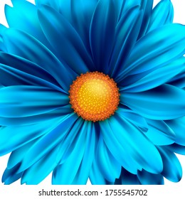 Blossoming bud of flower close up. Blue daisy flower bud. Vector 3D illustration.