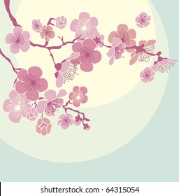 Blossoming Cherry Tree. sakura blossom. almond flowers
